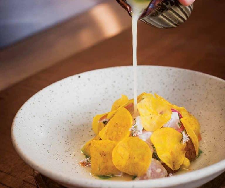 ceviche food and wine italia