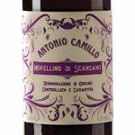 degustazione food and wine italia